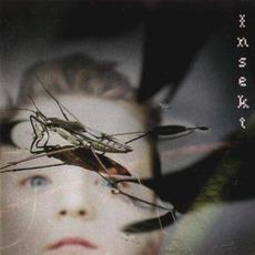 Insekt mp3 Album by Carptree