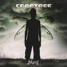 Nymf mp3 Album by Carptree