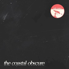 The Coastal Obscure by Hello Meteor