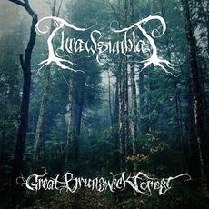 Great Brunswick Forest mp3 Album by Thrawsunblat