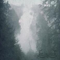 Vast Arboreal Sky mp3 Album by Thrawsunblat