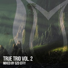True Trio, Vol.2 mp3 Compilation by Various Artists