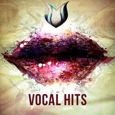 Vocal Hits mp3 Compilation by Various Artists