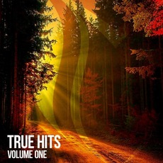 True Hits, Volume One by Various Artists