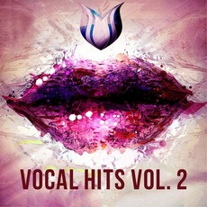 Vocal Hits, Vol. 2 by Various Artists