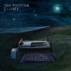 Z-Sides by Tom Rosenthal