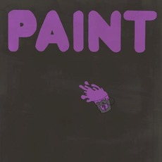 PAINT mp3 Album by PAINT