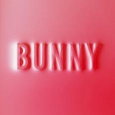 Bunny mp3 Album by Matthew Dear