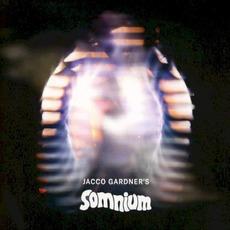 Somnium mp3 Album by Jacco Gardner