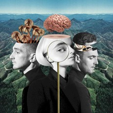 What Is Love? (Japanese Edition) mp3 Album by Clean Bandit