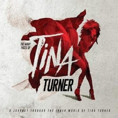 The Many Faces Of Tina Turner