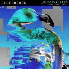 Sleepwalking (Jamie Jones Remix) mp3 Single by Elderbrook