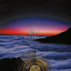 What Is Constant mp3 Album by PTF