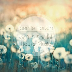 Gentle Touch: Soft & Soulful House Music mp3 Compilation by Various Artists