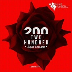 Two Hundred mp3 Compilation by Various Artists