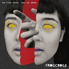 Shuffled Pieces_Puzzled Brains mp3 Album by Frogcodile