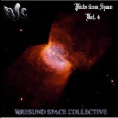 Picks From Space, Vol. 4 mp3 Album by Øresund Space Collective