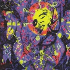 Slip Into The Vortex mp3 Album by Øresund Space Collective