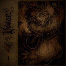 Into The Wild mp3 Album by Voodus
