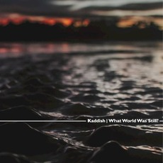 What World Was Still? mp3 Album by Kaddish