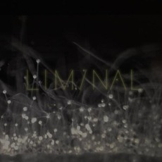Liminal 2 mp3 Compilation by Various Artists