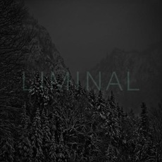 Liminal mp3 Compilation by Various Artists