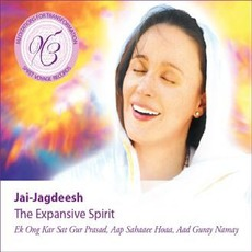 Meditations for Transformation: The Expansive Spirit mp3 Album by Jai-Jagdeesh