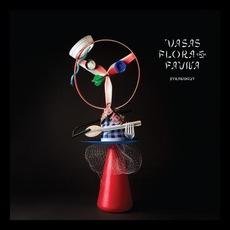 Strandgut mp3 Album by Vasas flora och fauna