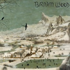 Birnam Wood mp3 Album by Birnam Wood