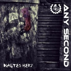 Kaltes Herz mp3 Album by Any Second
