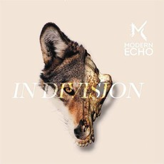 In Division mp3 Album by Modern Echo