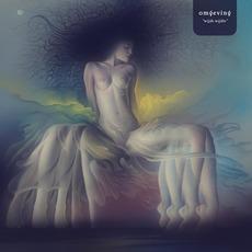Wijde Wijdte mp3 Album by Omgeving