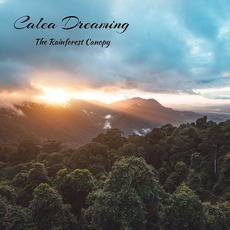 The Rainforest Canopy by Calea Dreaming