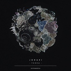 Terra (Instrumental) mp3 Album by Johari