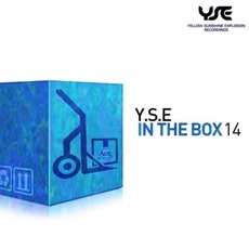 Y.S.E In The Box 14 by Various Artists