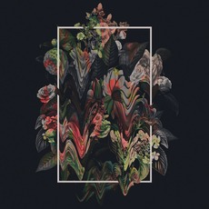Fiancé mp3 Album by Ed Tullett