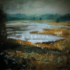 Verferum by Quercus