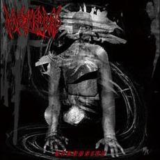 Recursive mp3 Album by Methedras