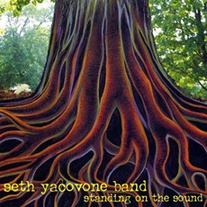 Standing On The Sound mp3 Album by Seth Yacovone Band
