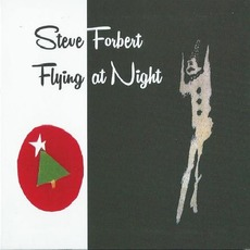Flying at Night by Steve Forbert