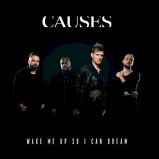 Wake Me Up So I Can Dream mp3 Album by Causes