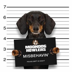 Misbehavin' mp3 Album by Moondog Howlers