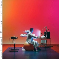 Outer Peace mp3 Album by Toro Y Moi