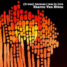 (It Was) Because I Was in Love (Re-Issue) by Sharon Van Etten