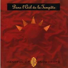 Dans L'Oeil De La Tempête mp3 Album by Handful Of Snowdrops