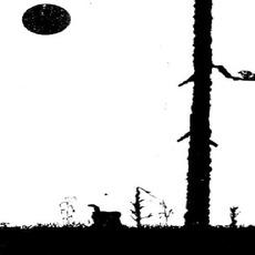 Nattslingor mp3 Album by Wagner Ödegård