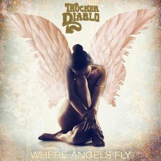 Where Angels Fly mp3 Album by Trucker Diablo