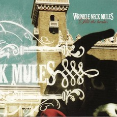 Pull the Brake mp3 Album by Wrinkle Neck Mules