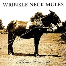 Minor Enough mp3 Album by Wrinkle Neck Mules