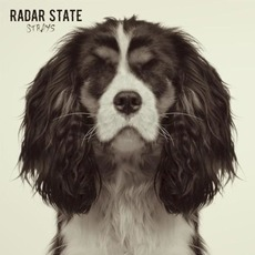 Strays mp3 Album by Radar State